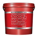 Scitec 100% Whey Protein Professional 5 кг